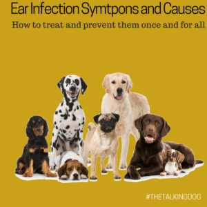 Ear issues