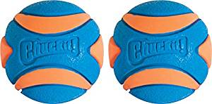 chuckit Ultra Squeaker Ball 2 Pack