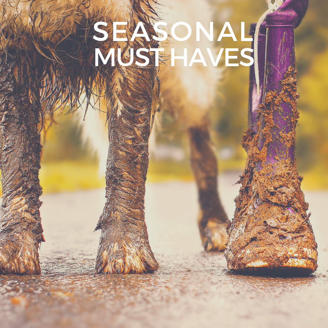 Website Image - Seasonal Must Haves (1)